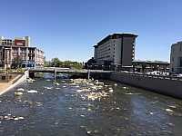 Condos, Lofts and Townhomes for Sale in Condos near the Truckee River