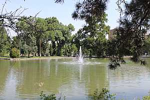 Browse active condo listings in Idlewild Park